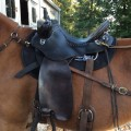 Ready For A Steele Trail Saddle