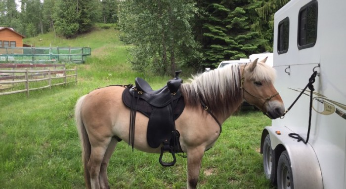 Thank you Eric for making me the perfect saddle!