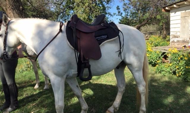I love my saddle!